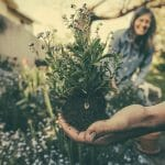 Benefits of gardening for your mental health