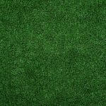 Spring lawn care tips: the grass will always be greener in your yard