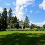 Summer lawn care basics