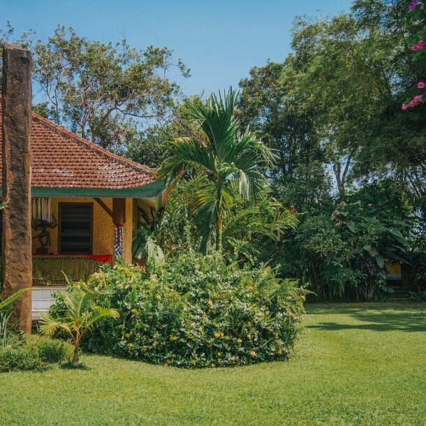 front yard tropical landscaping ideas